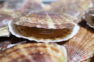 近くに食品のの写真・画像素材[1170554]