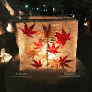 氷と紅葉の写真・画像素材[1142268]
