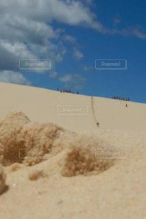 モートン島の砂漠 - No.1142353
