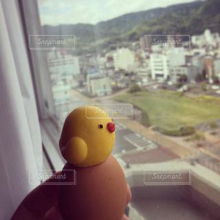 温泉たまごの上から温泉街を見下ろすひよこの写真・画像素材[1196591]
