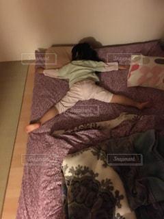 人寝の写真・画像素材[1152664]