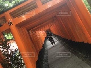 京都の写真・画像素材[1217959]
