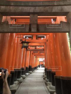 京都の写真・画像素材[1217960]