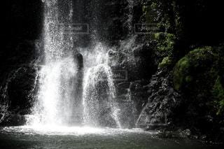 背景の木と滝 - No.1144623