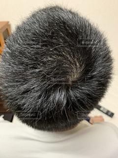 男の頭の写真・画像素材[2058796]