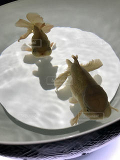 皿の上のケーキの一部の写真・画像素材[1144796]