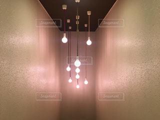 電球の写真・画像素材[1146150]
