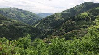 背景の山と木の写真・画像素材[1164648]