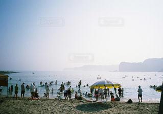 ビーチの人々の写真・画像素材[1147268]