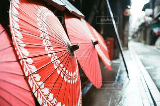赤い傘の写真・画像素材[1151757]