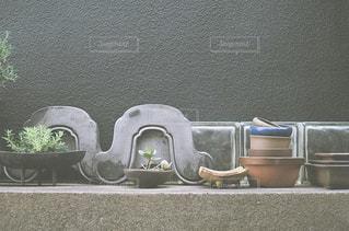 瓦と植物の写真・画像素材[2133020]