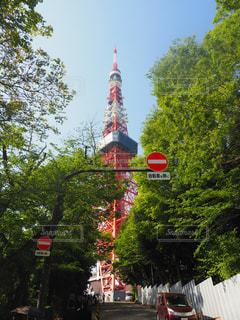 東京タワーの写真・画像素材[1147308]
