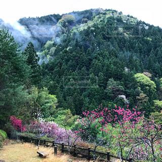 遠山郷 盛平山の写真・画像素材[1147733]