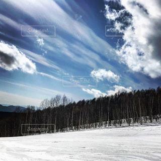 雪に覆われた斜面の写真・画像素材[1147757]