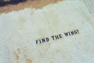 """""""翼を見つけた""""の写真・画像素材[1148605]"""