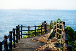 日向岬の写真・画像素材[1211711]
