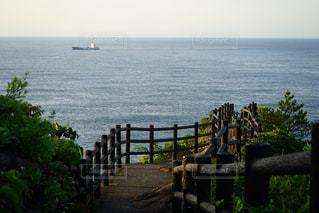 日向岬の写真・画像素材[1211714]