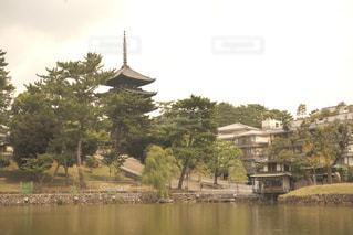 猿沢池と五重塔の写真・画像素材[1480616]