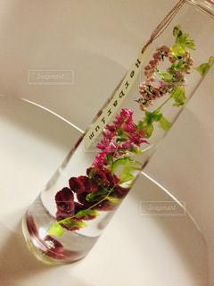テーブルの上の花の花瓶をのせた白プレート - No.1148774