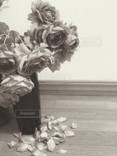 薔薇の写真・画像素材[1218627]