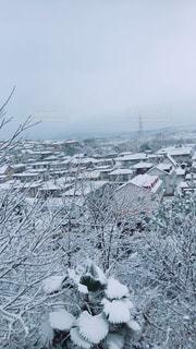 雪に覆われた斜面の写真・画像素材[1633436]