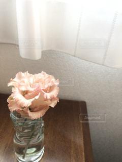 花とカーテンの写真・画像素材[2506765]