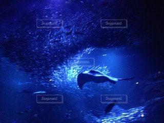 海の写真・画像素材[37459]