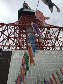 鯉のぼりと東京タワーの写真・画像素材[1159051]