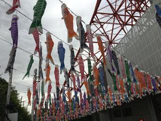 東京タワーとこいのぼりの写真・画像素材[1159052]