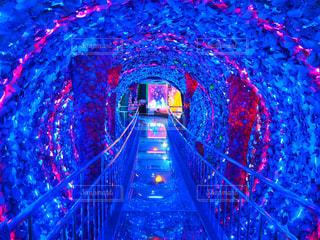 光のトンネルの写真・画像素材[1151086]