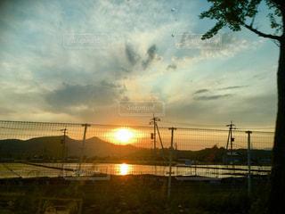 夕陽の写真・画像素材[1164441]