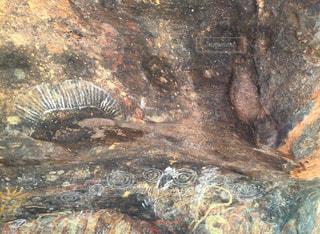 エアーズロックの壁画の写真・画像素材[1151874]