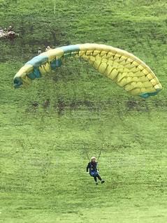 フィールドに凧の飛行の人々 のグループの写真・画像素材[1152595]