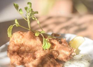 食べ物の皿のクローズアップの写真・画像素材[2491354]