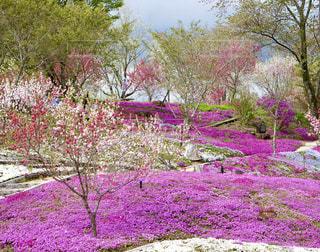 恵那峡の里の写真・画像素材[2078613]