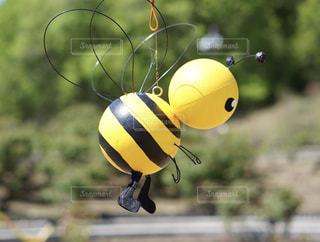 可愛い蜂さんの写真・画像素材[2098233]