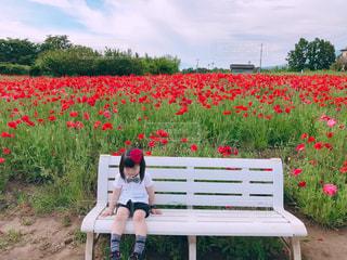 花の前にあるベンチに座っている人の写真・画像素材[1199000]
