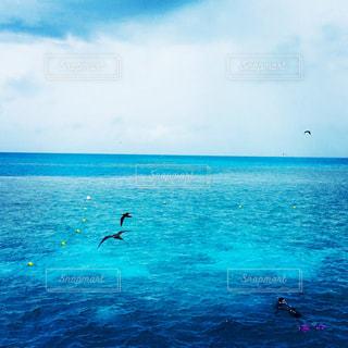 水の体の上に空気を通って飛んで男の写真・画像素材[1156211]