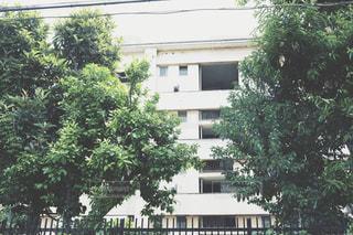 アパートの写真・画像素材[1288361]