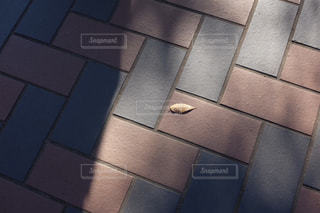 タイルと落ち葉の写真・画像素材[1422633]
