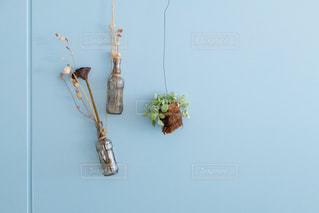 壁に掛かっている植物の写真・画像素材[2123942]