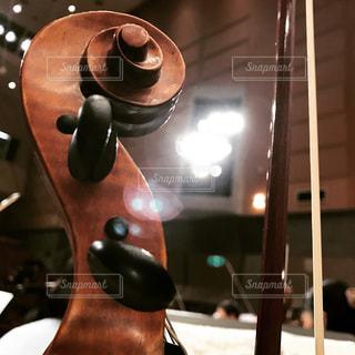 バイオリンの写真・画像素材[365730]