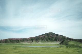 ミヤマキリシマの写真・画像素材[1198907]