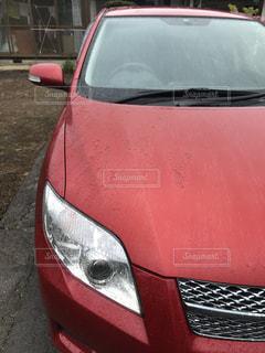 近くに赤い車のアップの写真・画像素材[1317220]