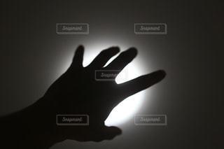 光に手を伸ばすの写真・画像素材[1162180]
