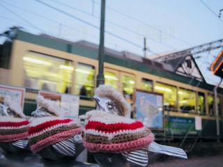 おしゃれすずめと江ノ電の写真・画像素材[1161479]