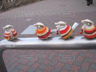 すずめの井戸端会議の写真・画像素材[1161481]