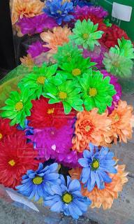 色とりどりの花のグループの写真・画像素材[1187518]