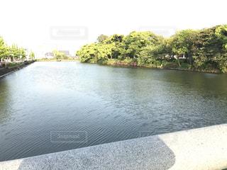佐賀城の水堀の写真・画像素材[1159911]