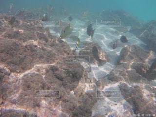 大きな岩の水中ビューの写真・画像素材[1160981]